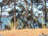 12 Tina Avenue Lamb Island, QLD 4184