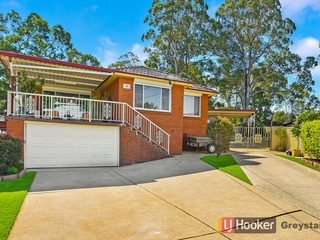 3 Ray Place Woodpark , NSW, 2164