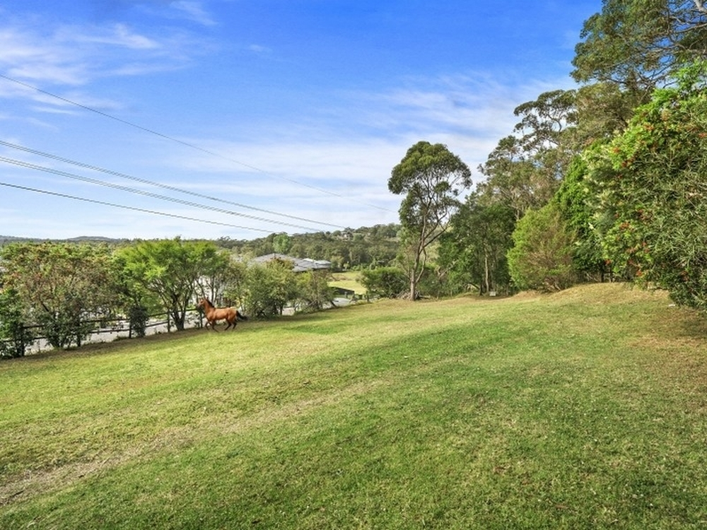113 Orchard Street Warriewood, NSW 2102