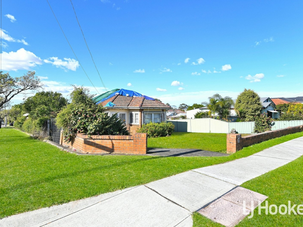 115 Priam Street Chester Hill, NSW 2162