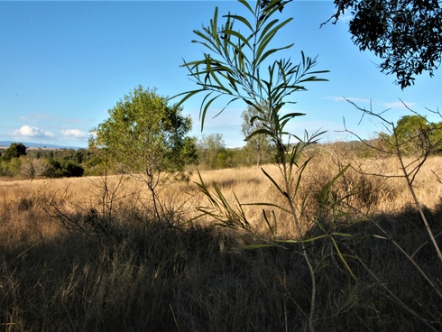 437-477 Rosewood Marburg Rd Tallegalla, QLD 4340