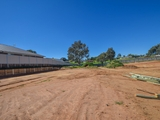 20 Guigni Place Young, NSW 2594