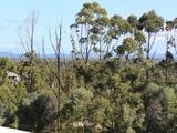 13 Hurdzans Reach Tallwoods Village, NSW 2430