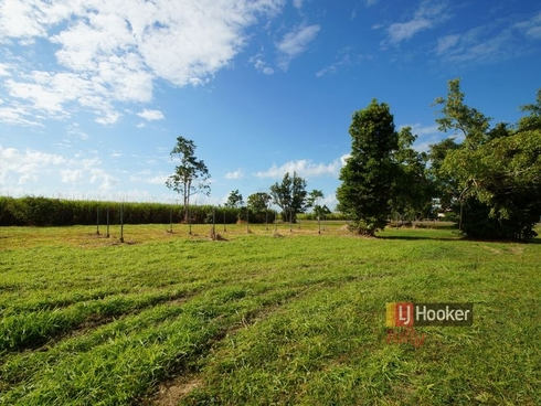 12 Brosnan Road Lower Tully, QLD 4854