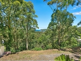 38 Harcourt Place North Avoca, NSW 2260