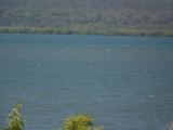 10 Atlantic st Lamb Island, QLD 4184