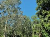 33 Waterford Drive Gumma, NSW 2447