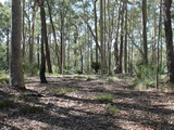 Lot 12 George Bass Drive Malua Bay, NSW 2536